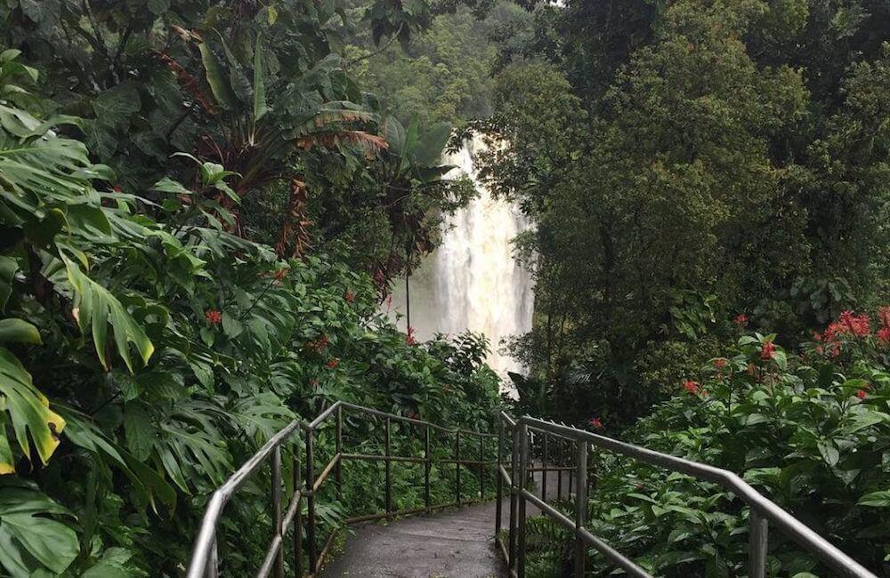 Akaka Falls, Hawaii Island Must Dos<br>? @hawaiiadmirer