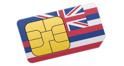 State of Hawaii Flag Sim Card.Credit: Brothers Good/Shutterstock