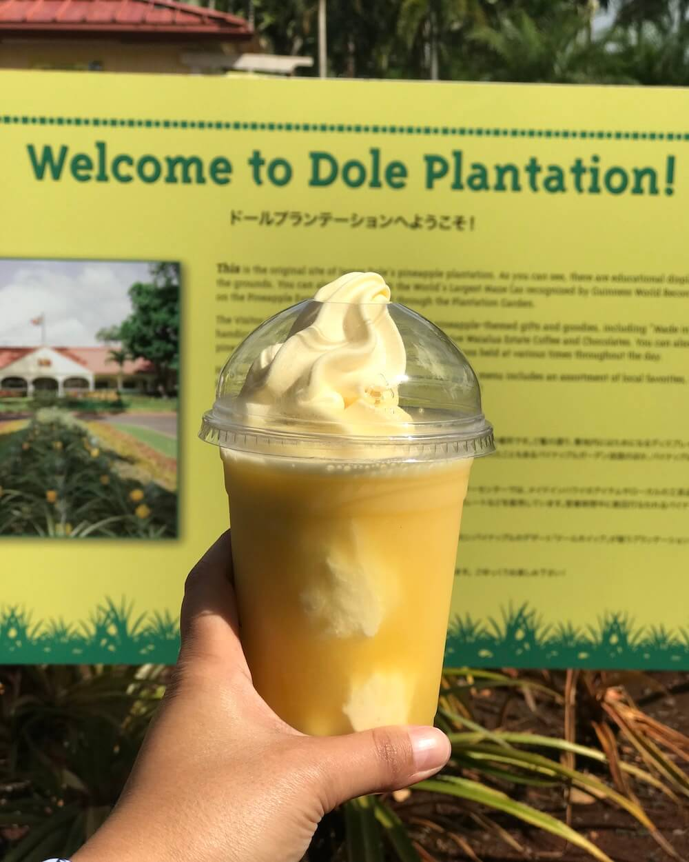 Pineapple Float, Dole Plantation, Oahu, Hawaii