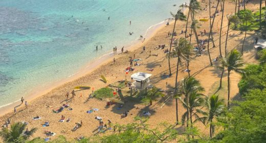 The Best North Shore and Hanauma Bay Tour